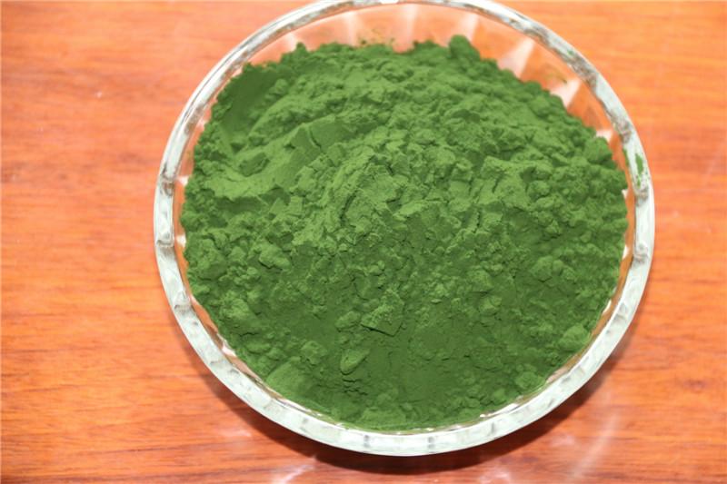 高EPA小球藻