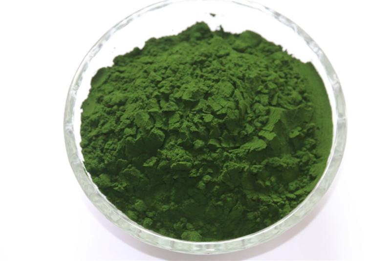 高蛋白小球藻