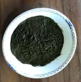 供应 海水小球藻粉--拟微绿球藻粉 富含EPA 自有生产基地